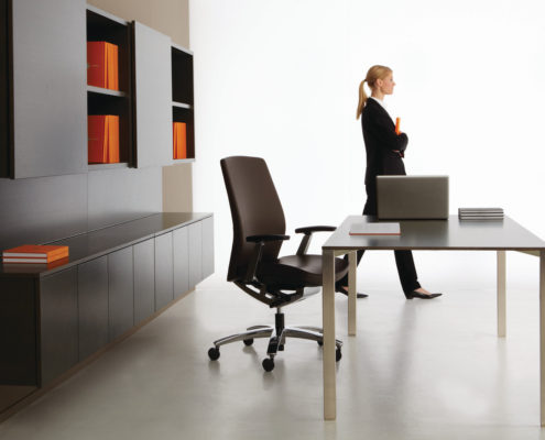 Dossier Executive Typical Dark Table Desk