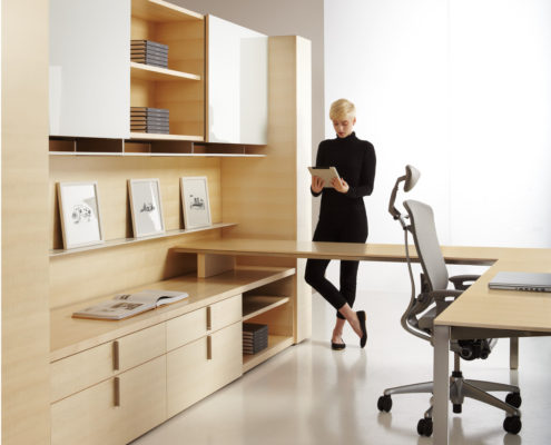 Dossier Executive Typical Overlap with Low Credenza