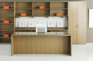 Dossier Executive Typical Standard Desk Full Modesty