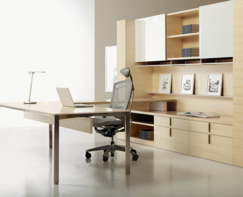 Dossier Executive Typical Table Desk