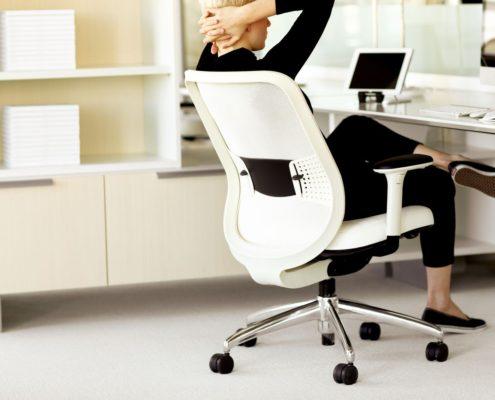 Projek Task Chair Stone Mesh Stone Outer Frame Stone Inner Frame Ebony Lumbar