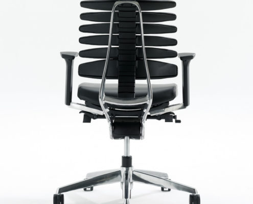 RBT Task Chair Back View Polished Aluminum Base
